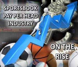 The sportsbook pay per head industry is on the rise