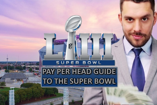 Watch your Super Bowl Odds